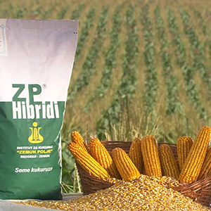 """Maize Research Institute """"Zemun Polje"""" """"Yield for Pride"""" - MAIZE TV Commercial (2010)"""